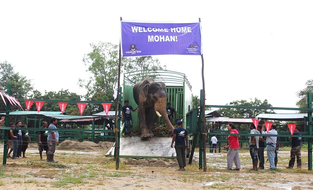 Mohan after rescue