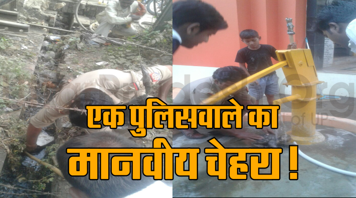 sp singh save monkey life in sultanpur
